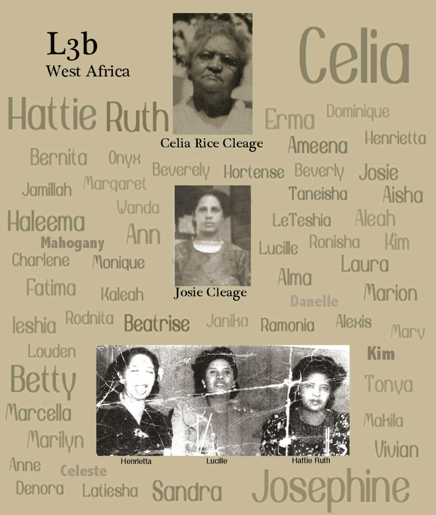 Celia Rice Cleage's MtDNA passed through her daughter to her daughters, to their daughters and on and on and on.