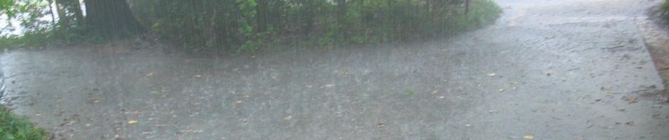 header_rainy