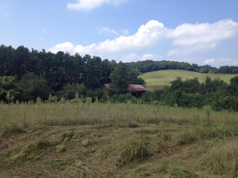 Loudon County farm land today.
