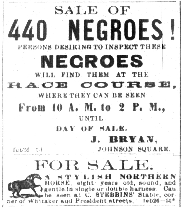 440 negroes for sale